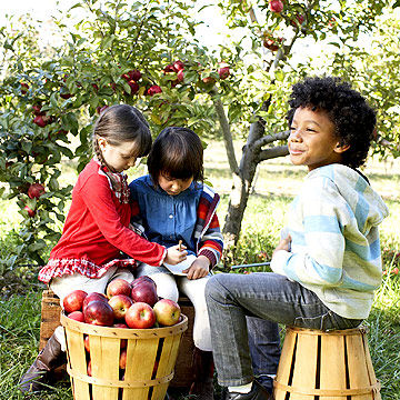 Kids with barrel of apples