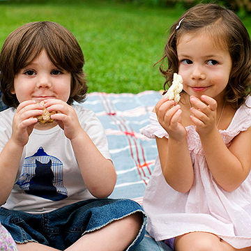 kids having a picnic