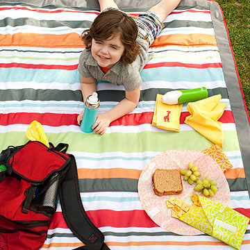 child having a picnic