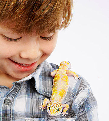 Child with lizard pet