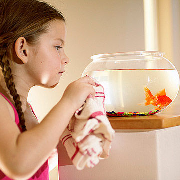 girl cleaning fish bowl