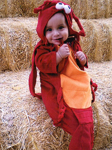 Cute animal themed costumes for kids lobster halloween costume solutioingenieria Images