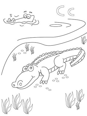 animal coloring pages - Color Book Page