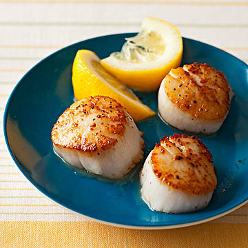 Simply Scallops