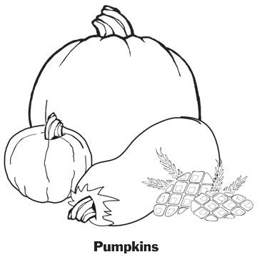 Pumpkins and gourds coloring pages for Pumpkin leaves coloring pages