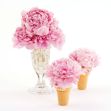 flowers in ice cream cones