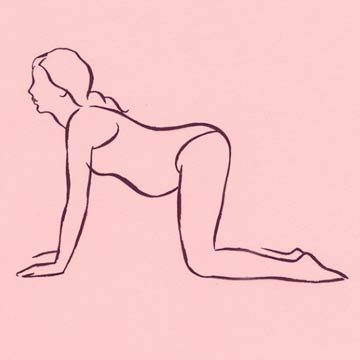 Dog Pose Stretch
