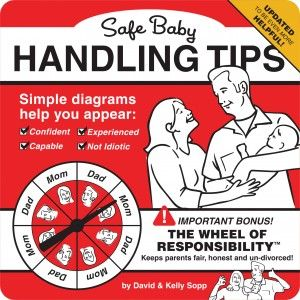 Safe Baby Handling Tips by David and Kelly Sopp