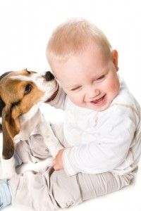 Study: Pets May Make Kids Healthier 29751