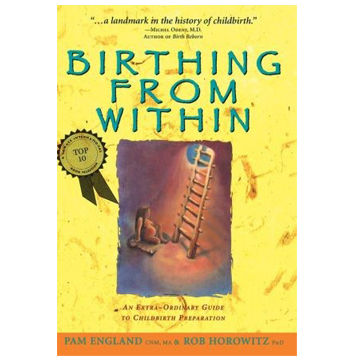 birthing from within book pdf