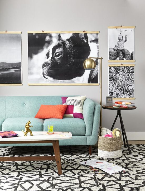 Upgrade Wall Decor Get The Big Picture Dog