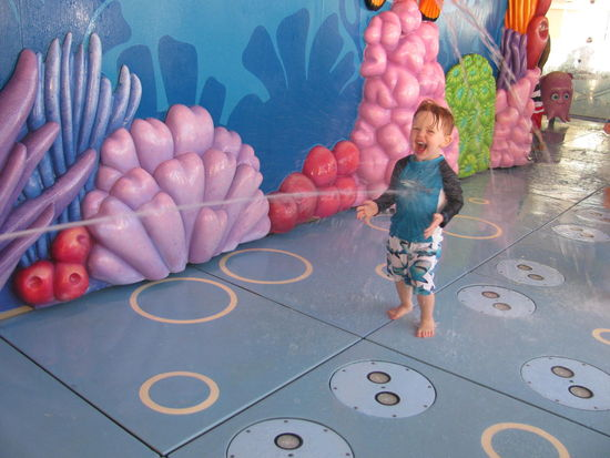 Joey at Nemo's Reef