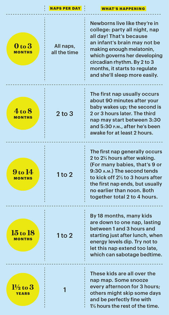 How Often Should Baby Nap Graphic
