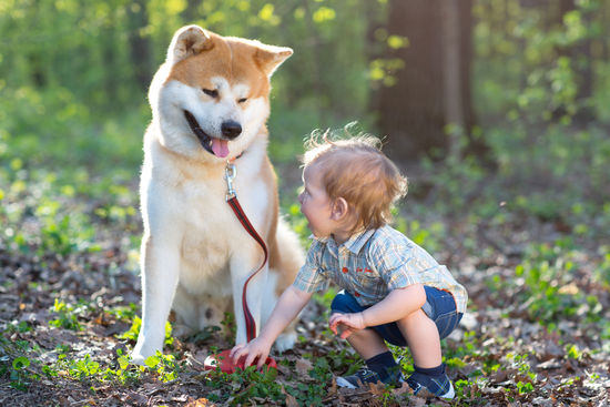 Puppies and Babies smile