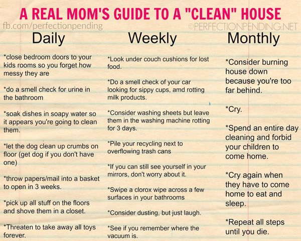 daily weekly monthly cleaning