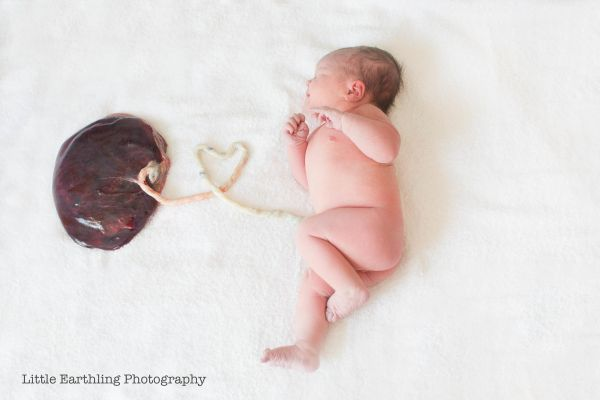 a baby and her placenta